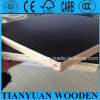 12mm Marine Plywood