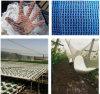 백색 플랜트를 위한 높은 장력 HDPE Raschel에 의하여 뜨개질을 하는 반대로 우박 그물
