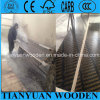 2X8 610mmx2440mm Kuwait Hot Sale Formwork Plywood /Waterproof Construction Plywood