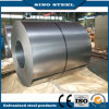 Galvanzied principal Steel Coil com Regular Spangle