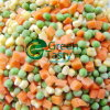 IQF Mixed Vegetables (mistura 3) em Highquality