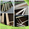 Álamo Core Brown Color Shuttering Plywood con Cheap Price