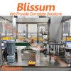 Instalación de producción de relleno del agua pura automática de 5 galones