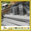 Alberino grigio del recinto della pietra del granito G654 per il giardino o il patio