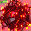 Het vrolijke Vuurwerk van Kerstmis fonkelt het LEIDENE Licht van het Koord