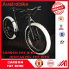 脂肪質のバイク26erカーボン脂肪質のバイクのFramesetの最大タイヤ4.8 カーボン完全な脂肪質のバイク
