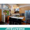 El espacio salva los muebles de las cabinas de cocina del almacenaje (AIS-K280)