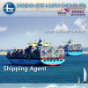 Océan/Sea Freight Shipping Chine vers Gênes