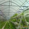Парник Hydroponics для выращивания растения