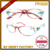 Fr3225 Vogue Appearance Plastic Frames Fashion Reading Glasses Made em China