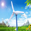 Gerador de vento novo! 400W Electric Generating Windmills para Sale