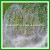 Sulfato del amonio de Capro del estado cristalino grisáceo