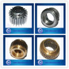 Diverso Kinds de Precision Brass Spur Gears