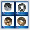 Diverso Kinds de Precision Brass Spur Gears