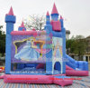 Leyuan Nice Princess Jumping Castles para Sale En14960