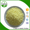 Fertilizzante composto 16-16-16 di alta qualità NPK