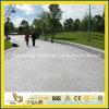 Driveway 정원을%s 자연적인 Grey Granite Block Paving