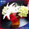 입방체 꽃 상자 & 아크릴 꽃 상자