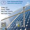 насосная система DC 3in центробежная солнечная для Irriagtion 750W 1HP