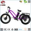 脂肪質のタイヤ3の車輪の安い電気自転車Lsdの三輪車
