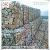 Acoplamiento del PVC de alambre/cesta cubiertos/hexagonales de Gabion para el edificio