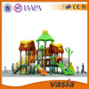 2016 Vasia Playground Designed voor Children (VS2-6048A)