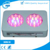 Evergrow Novas2 90W LED Smart Grow Light per Indoor Growing