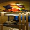 De veelkleurige Schotel van de Kunst van het Glas voor Plafond