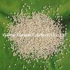 Nicotinic Acid Slow Release Pellets