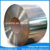 Chapa de aço inoxidável laminada de tampa de PVC (430)