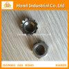 Surtidor de oro Ss 316 del acero inoxidable 3/4 tuerca de fijación de K  ~4