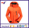 Muliti-Function Windproof impermeável Outdoor Sports Mountain Jacket para mulheres