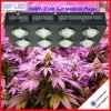 1000W Veg / Flowering Switches El espectro completo COB LED crece las luces