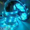 Farbenreiche flexible LED Streifen Unterhaltungs-Dekoration-Digital-SMD 6803