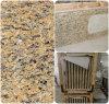 Bancada nova da cozinha da estratificação do granito do ouro de Venatian