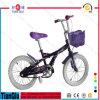 Das 12  16  20  Kind-Fahrrad/das Fahrrad, Baby-Fahrrad/Fahrrad, scherzt Fahrrad/Fahrrad