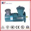 Motor de indução elétrica da Ex-Prova com regulamento da velocidade