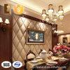 Panneaux de bâche légers décoratifs modernes de mur de Sounproof