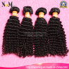 Отсутствие Tangle отсутствие Shedding 7A Unprocessed бразильского Afro Kinky Curly Human Virgin Hair