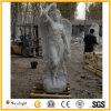 Weiße Marmorstatue, die Steinengels-Statue-Engels-Skulptur schnitzt