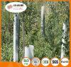 Protezione della pianta dei pp/protezioni rigide di Sureflute