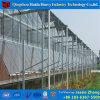 AngricultureのためのHydroponicシステムが付いているガラス温室