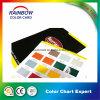 Freie Entwurfs-Glanz-Ende-Lack-Farbton-Karte für Reklameanzeige