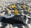 [أم] عادية [قونليتي] وجبة [كمبو] خارجيّة شاطئ [سبيكبلّ] لعبة