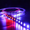 12V Digital Addressable RGB LED Strip Ws2811 60PCS/M