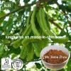 Het 10:1 van het Uittreksel van de Peulen van het Fruit van de Boom van het johannesbrood; 20:1