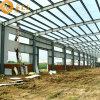 Almacén prefabricado económico de la estructura de acero (SS-382)