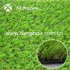 庭または景色(SUNQ-AL00054)のための人工的なカーペット