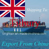 Remetente barato do transporte do frete de mar da expedição de China a Felixstowe, Bradford, Bristol, Birmingham, Tilbury