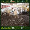Azienda agricola di pollo della struttura d'acciaio di Lingshan House-ISO9001: 2008